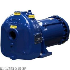 81-1/2E3-X15-3P - SELF-PRIMING EXPLOSION-PROOF ELECTRIC CENTRIFUGAL PUMPS