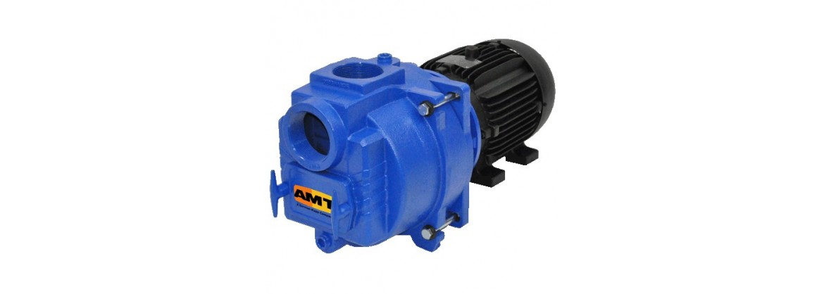"2"" to 4"" Sewage Trash Pumps"